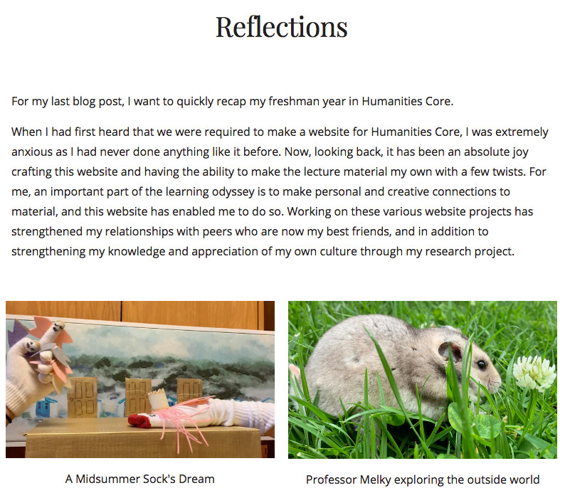 Image of a student's website reflection